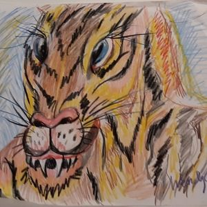 Wendy Gell Art drawing of tiger colored pencil